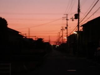 Morning_glow